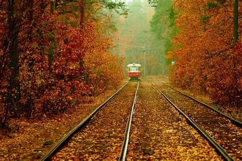 Autumn and the Kyiv Tram – an amazing combination